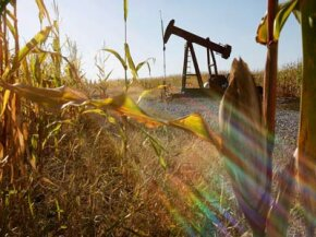 An oil well stands in the middle of an Illinois corn field. The state is now one of the country's leading ethanol producers.