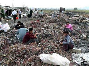 Women in Guiyu, China, sort wire that has been torn from discarded computers. The wires are sorted during the day and burned at night, releasing carcinogenic hydrocarbons and dioxins near areas where many families live.