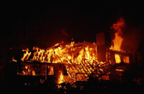 Environmental terrorism, or eco-terror, often involves burning down housing developments.