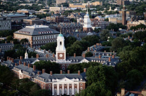 Future ecofeminists can study the subject at Harvard University and a range of other academic institutions.
