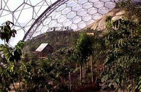 An inside view of the Humid Tropics Biome, the centerpiece of the Eden Project