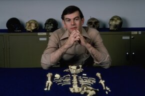 "Paleoanthropologist Donald Johanson and his find, ""Lucy,"" the first nearly complete Australopithicus afarensis discovered."