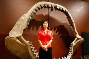 Enya Kim, from auctioneers Bonhams & Butterfields' natural history department, stands inside a set of shark jaws from the prehistoric species Carcharocles megalodon that grew to the size of a school bus.