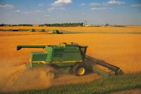 This combine is harvesting wheat on a vast farm in the U.S.A.
