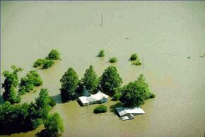 Flooding of farmland in Missouri. Heavy rain in the spring and summer of 1993 flooded areas throughout the midwestern United States, leading the federal government to declare 500 counties in nine states as major disaster areas.