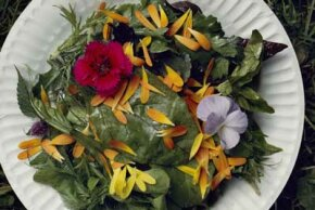 Edible flowers can make an attractive edition to a meal.