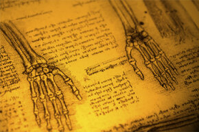 Leonardo da Vinci's sketches were accompanied by precise measurements and observations about ratios found in the human form.