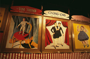 The Ringling Circus Museum in Sarasota, Florida has a collection of advertisements from P.T. Barnum's sideshow, featuring the tiny General Tom Thumb, original Siamese twins Chang and Eng Bunker and 'fat lady' Alice from Dallas.