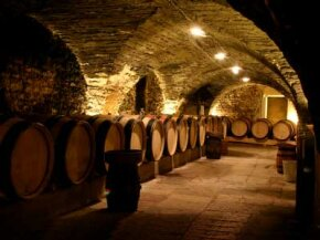 French wine varies from region to region. See our collection of wine pictures.