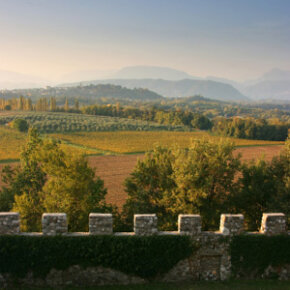 The view from Arcano castle near Udine, Italy, near the western border of the Friuli-Venezia Giulia wine region­. See our collection of wine pictures.