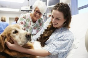 Bringing animals to visit hospitalized patients is one of many aspects of an animal therapist's job.