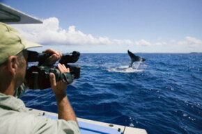 It may not seem like much to film on a boat, but it can actually be quite dangerous. See more TV Show Pictures.