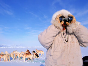 Since global warming has affected polar bear populations, Inuit hunters find their traditions slipping away. See more arctic animal pictures.