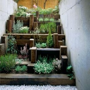 Tiered garden in limited space.