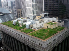 The Chicago City Hall green roof helps cool the building and minimize water run-off. See more green science pictures.