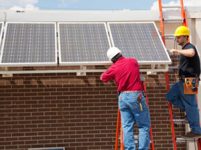Greening your home can be much simpler than installing solar panels all over your roof. See more green living pictures.