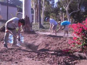 These Angelenos are about to turn this unused patch of land into a groomed garden.