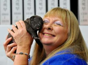Bernann McKinney is the first person to buy a commercially cloned pet. Scientists at Seoul National University cloned her deceased pit bull terrier.