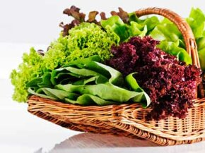 Basket of fresh vegetables