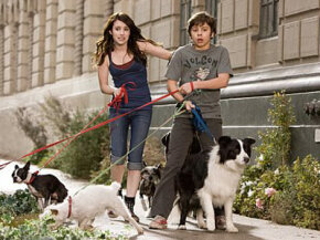 "Dog Image Gallery After finding a place to hide their dog Friday, Andi (Emma Roberts, left) and her brother Bruce (Jake T. Austin, right) eventually wind up giving shelter to most of the strays in town in the comedy/adventure ""Hotel for Dogs."" See more dog pictures."