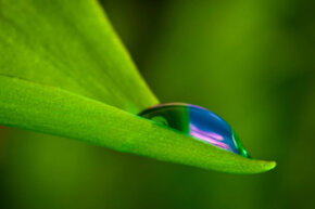Raindrops have the ability to reflect and refract images of the objects around them. Because of this, we can create the illusion of colored raindrops fairly easily.