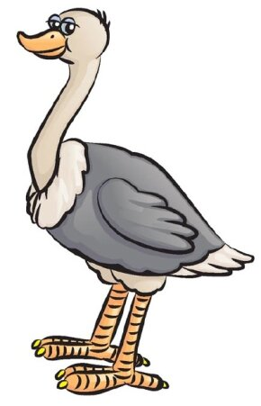Learn how to draw this ostrich.
