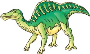 Dinosaur Image Gallery The bumpy, ridged back and strong legs of the Ouranosaurus make it a cool dinosaur. See more dinosaur pictures­.