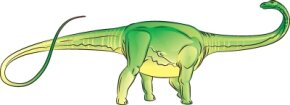 The Diplodocus dinosaurs tail is longer than its body. See more dinosaur pictures.