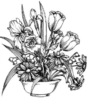 Flower Image Gallery Learn to draw a flower arrangement and other flowers and plants with our easy steps. See more pictures of flowers.