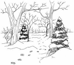 Learn how to draw this woodland trail landscape.