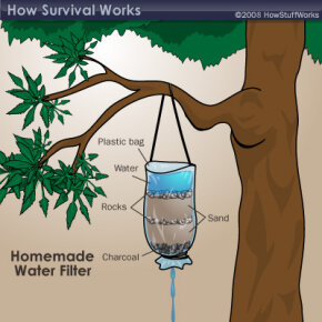 You can fashion a water filter if you have a plastic bag. Learn more about this method in How to Find Water in the Wild.