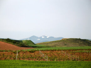Spain's La Rioja wine region, which is named for two rivers, delivers many fine wines. See our collection of wine pictures.­