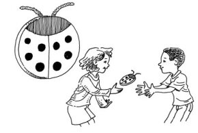 Toss your ladybugs back and forth with friends.