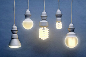 A sampler of light bulbs, some of which are more efficient than others