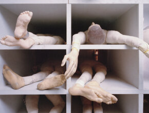 A limb that's fallen asleep can feel like dead weight. Test your knowledge of the body with the Human Body Quiz.