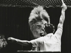 Lion tamer Dieter Farell of the Sarassani circus in Duesseldorf, Germany, in 1964. See more pictures of big cats.
