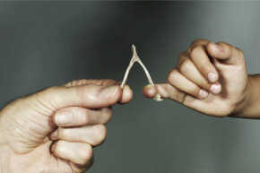 "Wishbones may be the origin of the term ""getting your lucky break."" Who knew?"