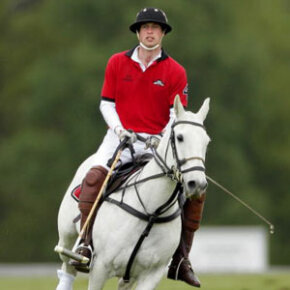 Polo is a princely sport.