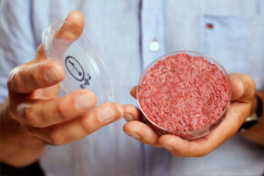 Professor Mark Post holds the world's first lab-grown beef burger in 2013.