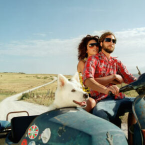 It'd be cool if your dogcould ridein the sidecar, butFido's safer in a pet carrier. See more pet pictures.