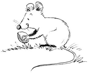 """Mice are timid creatures. That's why people sometimes say that someone is as """"timid as a mouse."""""""