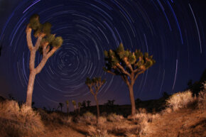 Joshua Tree National Park in Utah is a very popular night hiking (and night photography) spot.