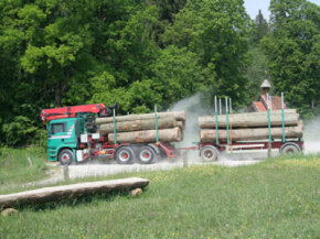 Logging trucks are likely candidates for overweight permits.