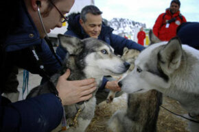 A veterinarian examines sled dogs in Avoriaz, France, before the Grande Odyssee sled dog race.