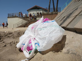 To combat growing trash problems associated with plastic bags, some countries and cities have initiated bans on them.