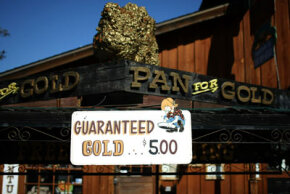 With gold trading near $900 per ounce, people are flocking to California's gold country in search of gold. Companies offering gold panning tours are being inundated with reservations, and mining supply stores are seeing a spike in people interested in purchasing supplies.