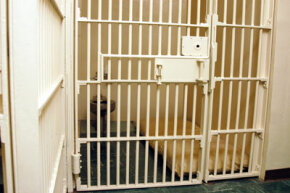 A cell on Death Row at San Quentin State Prison in Point Quentin, California.