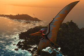 For years, researchers doubted pterosaurs' flying abilities, but we now know just how well their strong arms and lightweight wings helped launch them through the sky.
