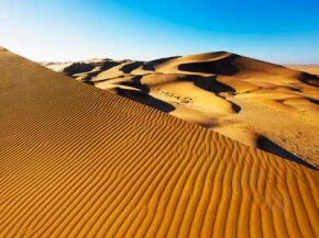 Safari Image Gallery The sand dune landscape in Namibia, Africa. See more African landscapes in safari pictures.