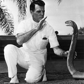 Legendary snake handler Bill Haast has some one-on-one time with a cobra in 1972.